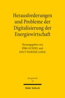 Herausforderungen und Probleme der Digitalisierung der Energiewirtschaft